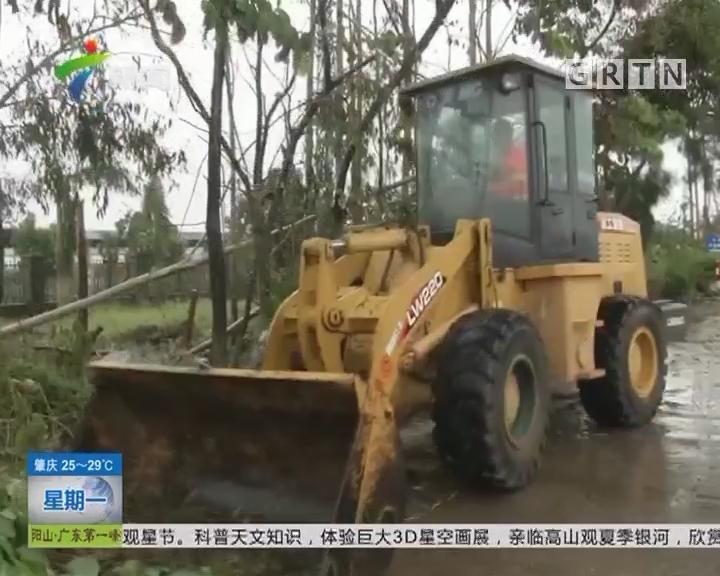 台风过后抢修复产:江门台山 道路树木受损严重 清障工作有序进行