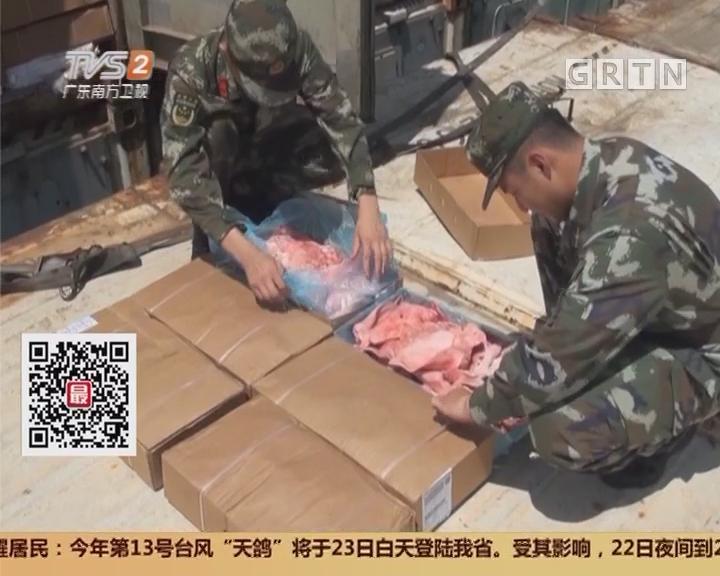 广东海警:查获走私冻品700多吨 案值3千多万