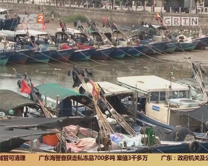 """防御台风""""天鸽"""" 阳江东平:千船归港避风"""