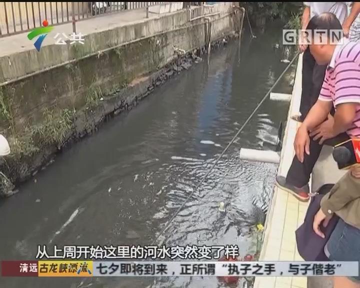 村民求助:河涌疑被废油污染 气味难忍