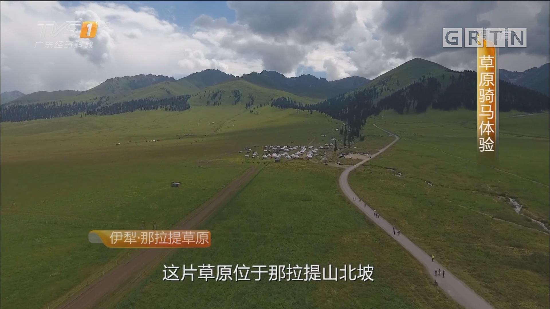 北疆——伊犁·那拉提草原