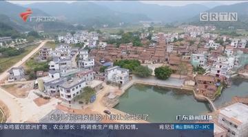 广东各界干部群众:为决胜全面小康实现中国梦而奋斗