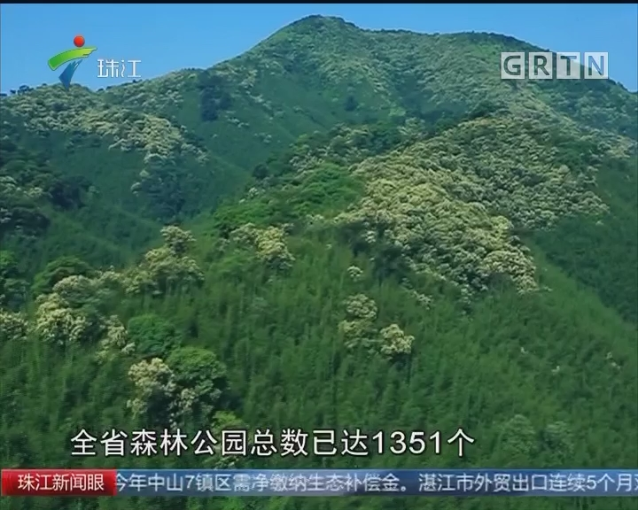广东:实施四大绿化工程 建设美好生态环境