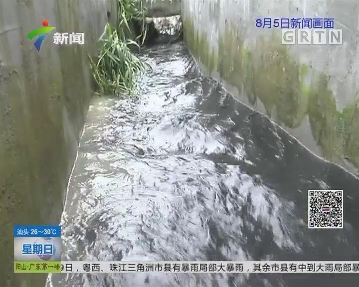 揭阳甲鱼场污染追踪 村民:甲鱼养殖场无证排污 污染村水渠