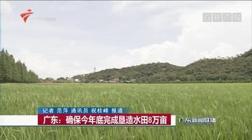广东:确保今年底完成垦造水田8万亩