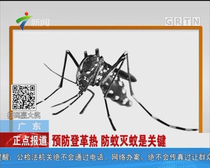 广东:预防登革热 防蚊灭蚊是关键