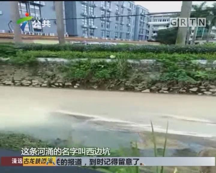 """河涌变成""""牛奶河"""" 怀疑工厂偷排"""