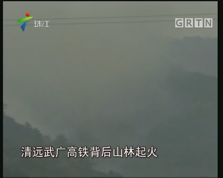 清远:高铁站后山林大火 失火者获刑一年半