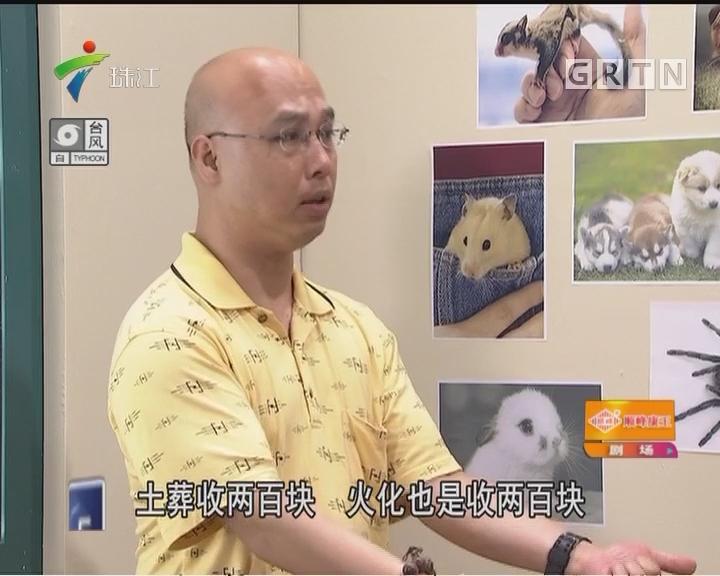 [2017-09-03]外来媳妇本地郎:通往天堂的路