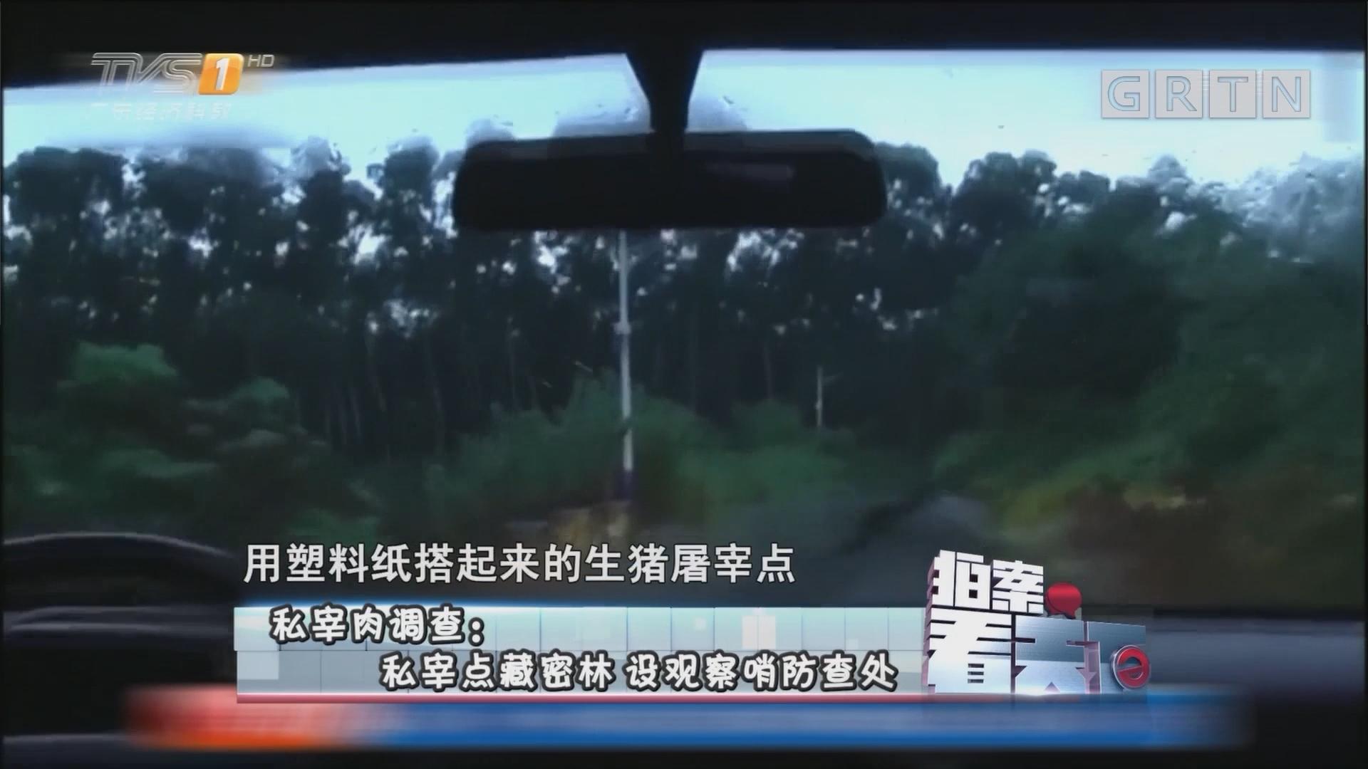 [HD][2017-09-01]拍案看天下:私宰肉调查:私宰点藏密林 设观察哨防查处
