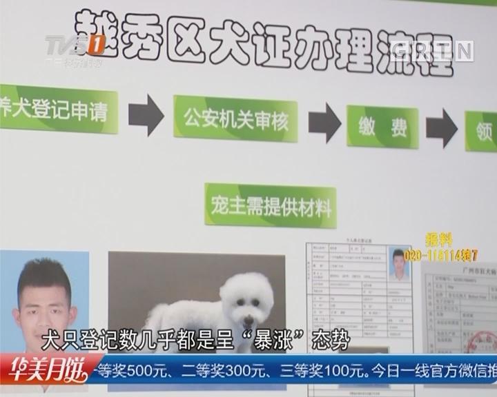 """广州:文明养犬宣传 """"最严""""执法实行一个月 登记数暴增"""
