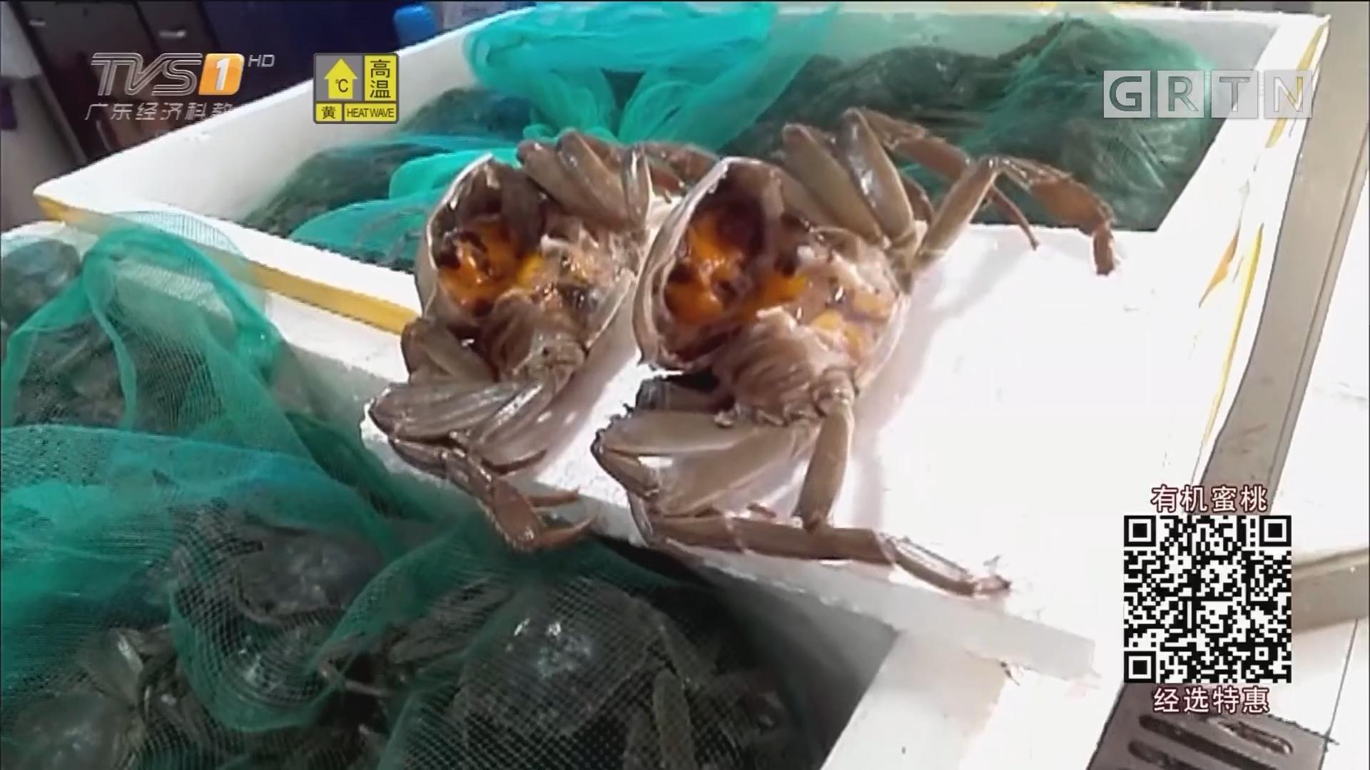 阳澄湖大闸蟹未上市 市场就有卖?