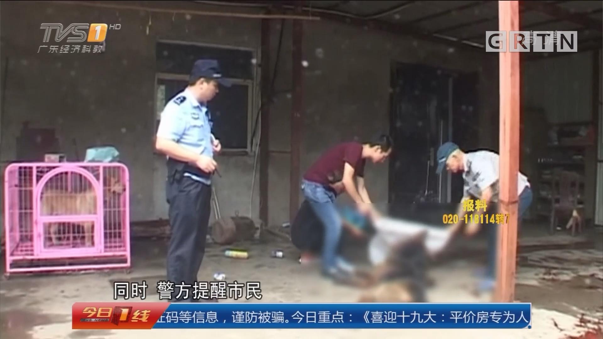 南京:狼狗发狂咬人 特警现场击毙