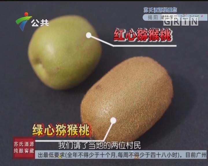 [2017-09-13]生活调查团:吃了猕猴桃舌头会发麻?