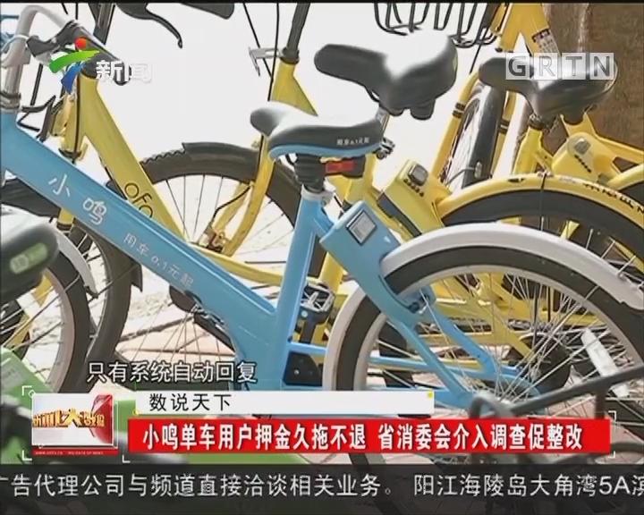 小鸣单车用户押金久拖不退 省消委会介入调查促整改