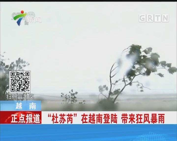 """越南""""杜苏芮""""在越南登陆 带来狂风暴雨"""