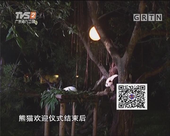 夜宿熊猫馆