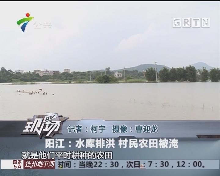 阳江:水库排洪 村民农田被淹