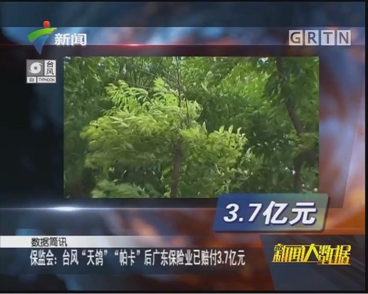 """保监会:台风""""天鸽""""""""帕卡""""后广东保险业已赔付3.7亿元"""