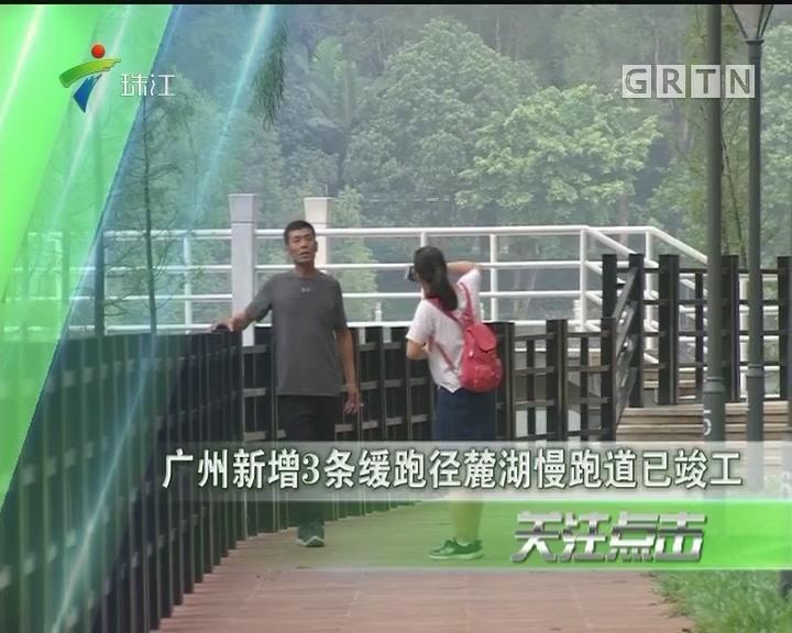 广州新增3条缓跑径麓湖慢跑道已竣工