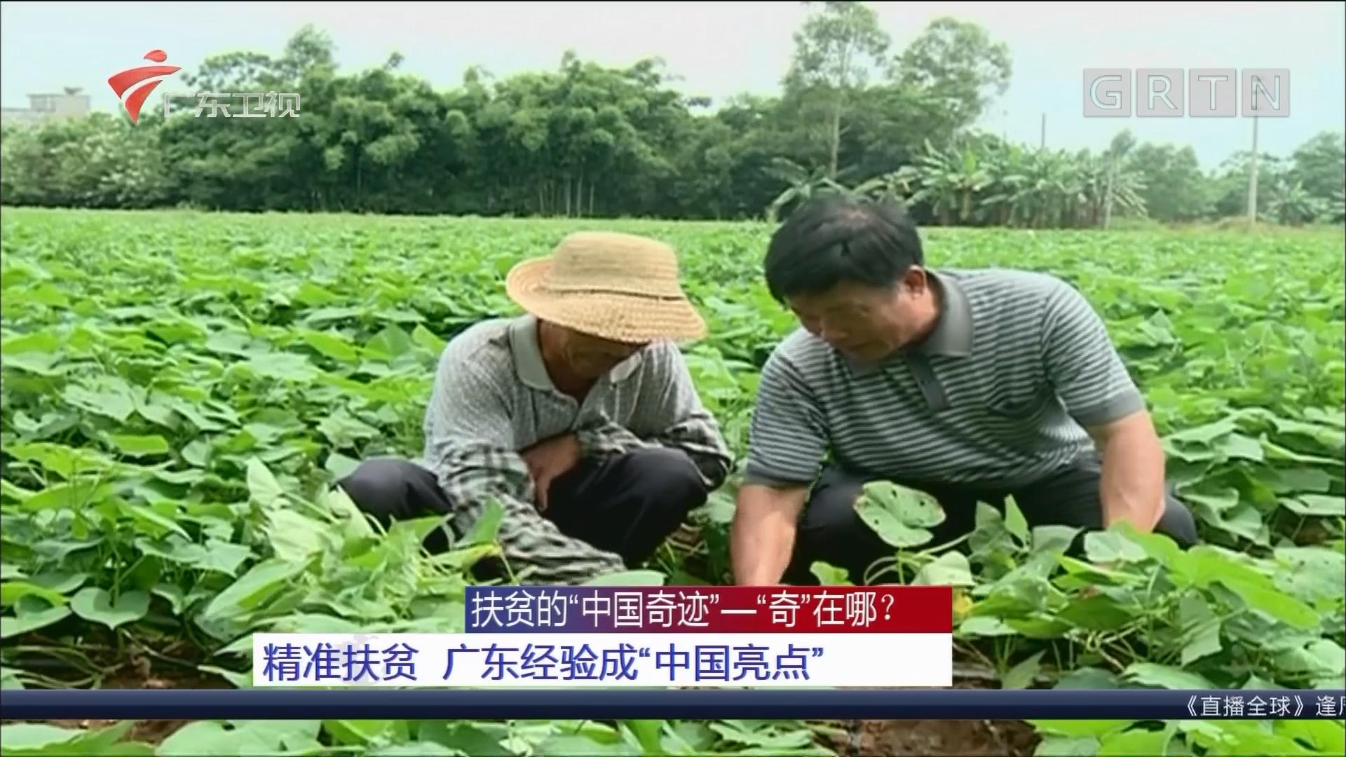 """扶贫的""""中国奇迹""""—""""奇""""在哪? 精准扶贫 广东经验成""""中国亮点"""""""