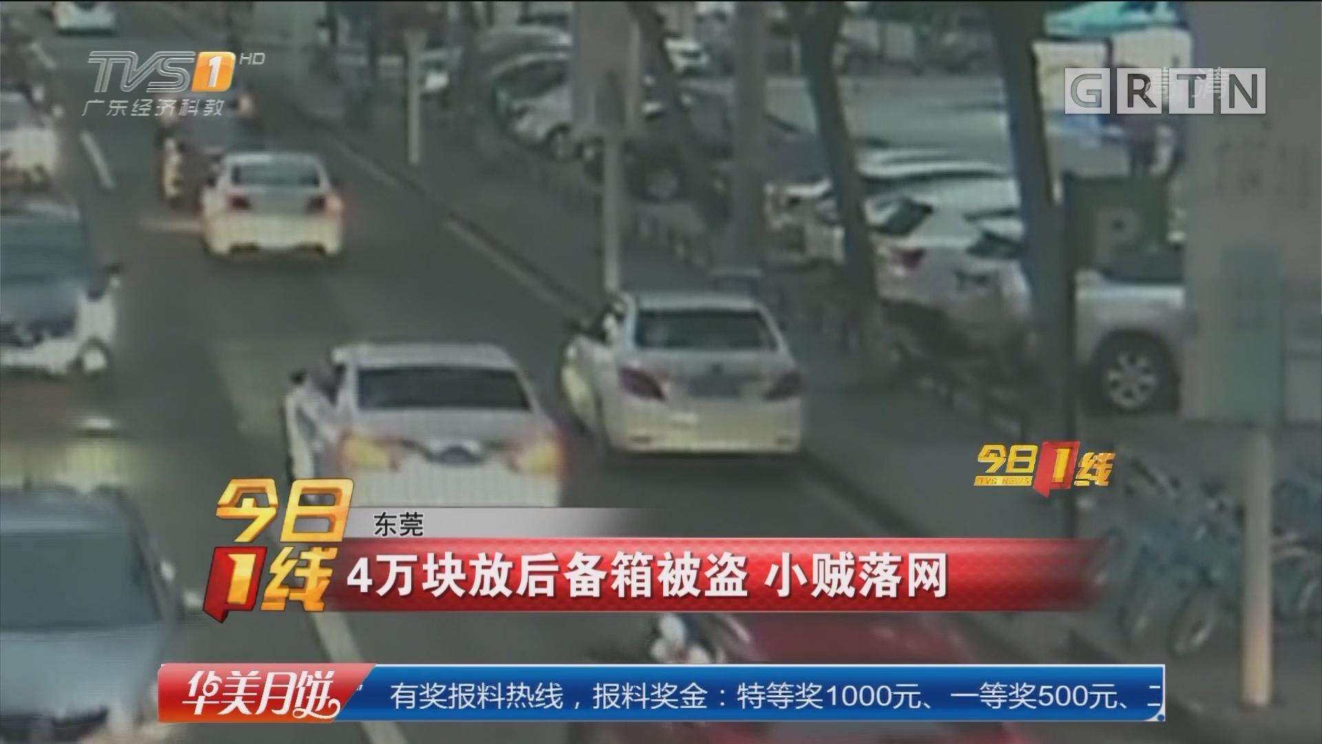 东莞:4万块放后备箱被盗 小贼落网