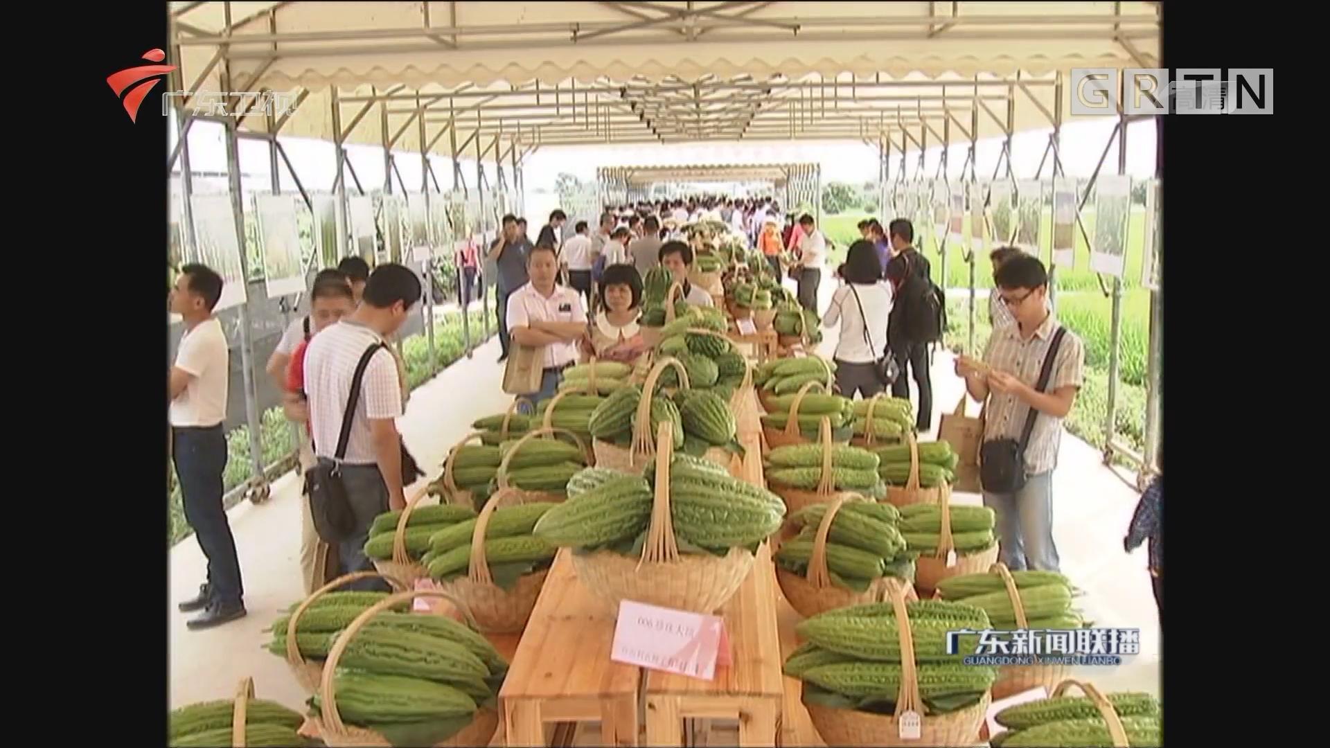 广东:今年种业博览会将特设国际优质品种展区