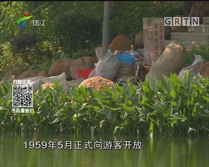 广州:东山湖要抽干 启动水质提升工程