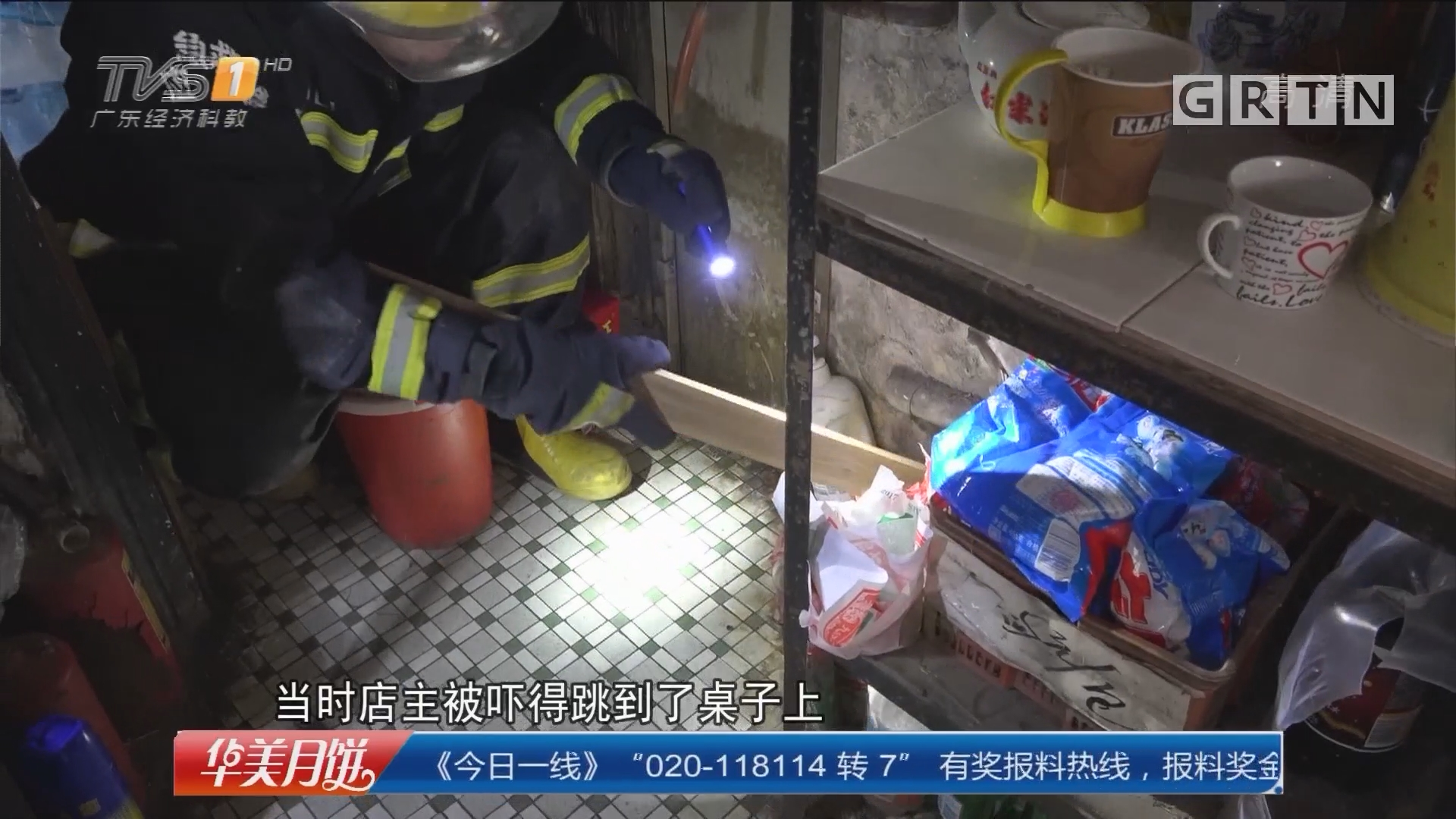 中山消防:剧毒银环蛇闯入 店主惊吓跳桌上