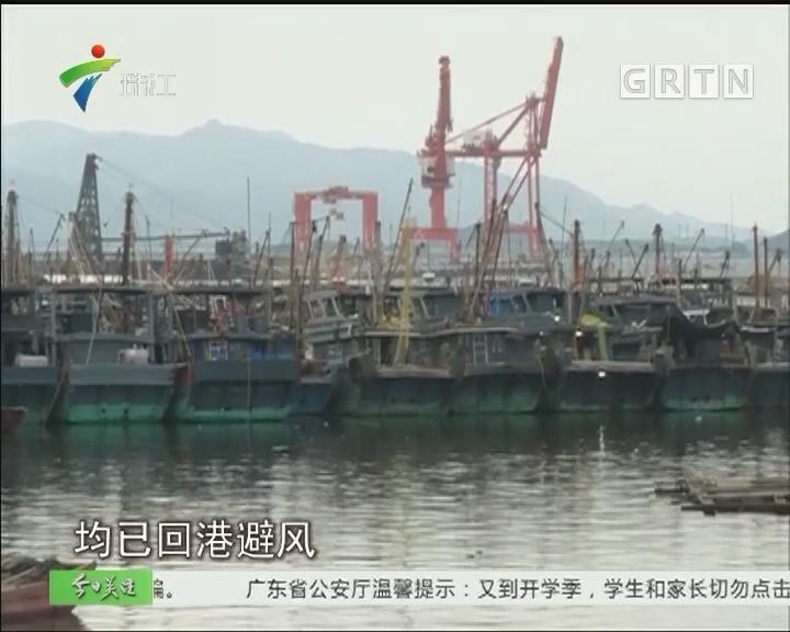 """台风""""玛娃""""逼近广东 沿海渔船归港避风"""
