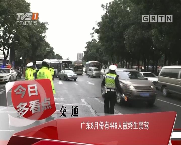 交通:广东8月份有446人被终生禁驾