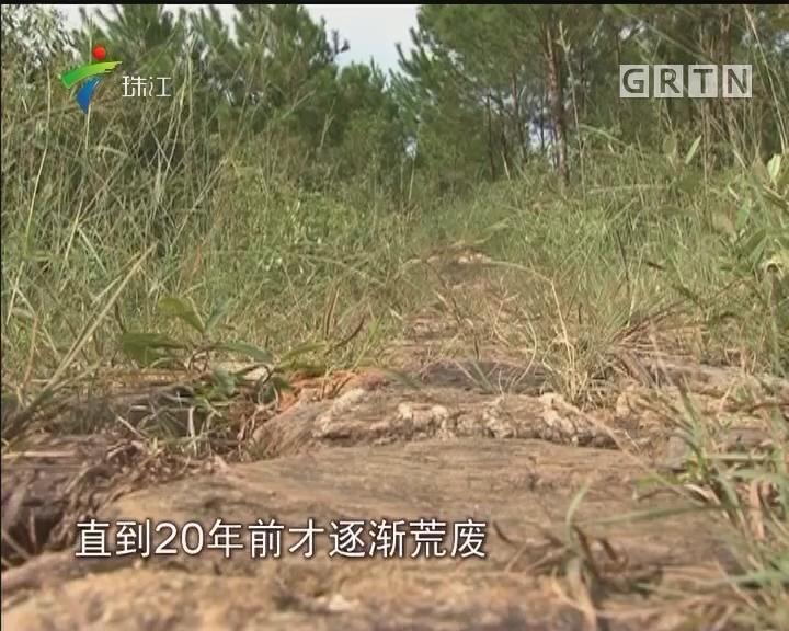 河源:百里古道重现