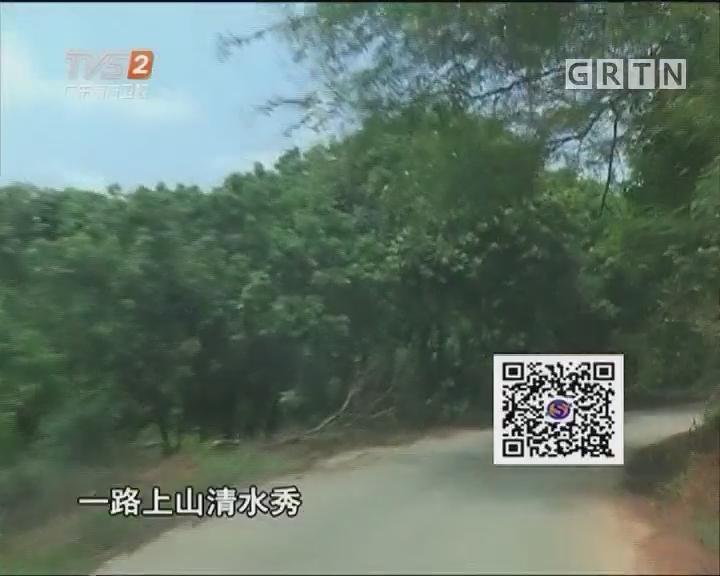 南粤驿道行:从化钱岗古道
