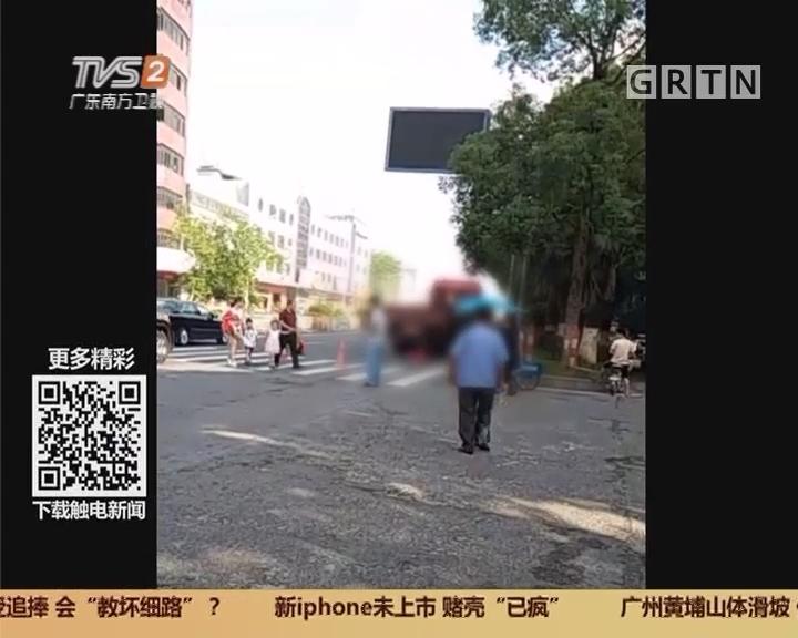佛山顺德陈村:省道车流大 行人过马路存隐患