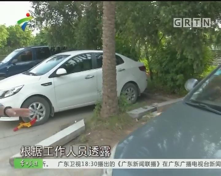 广州南站专项整治违例停车