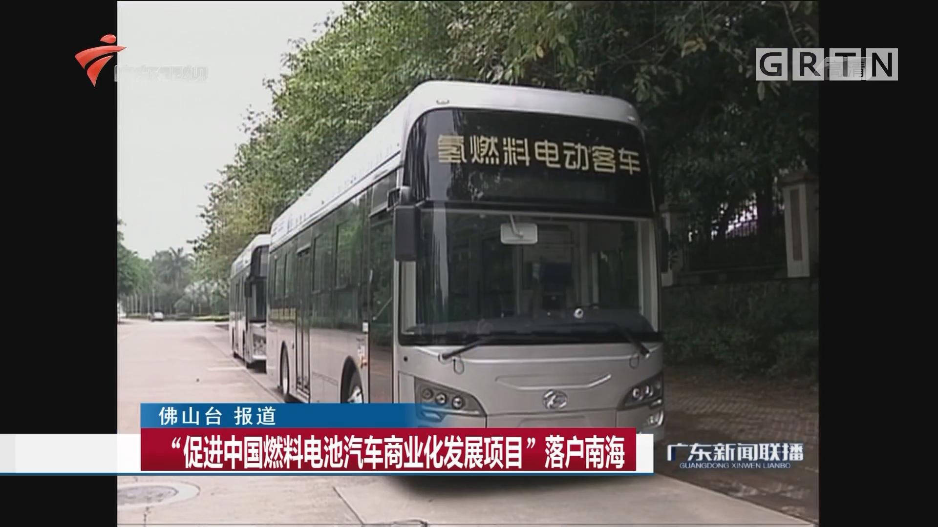 """""""促进中国燃料电池汽车商业化发展项目""""落户南海"""