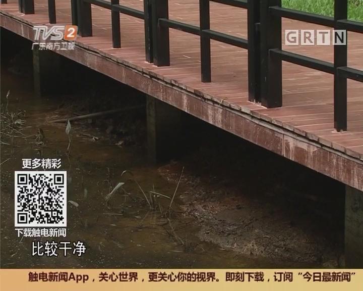 广州:广州新增3条缓跑经 麓湖慢跑道已竣工