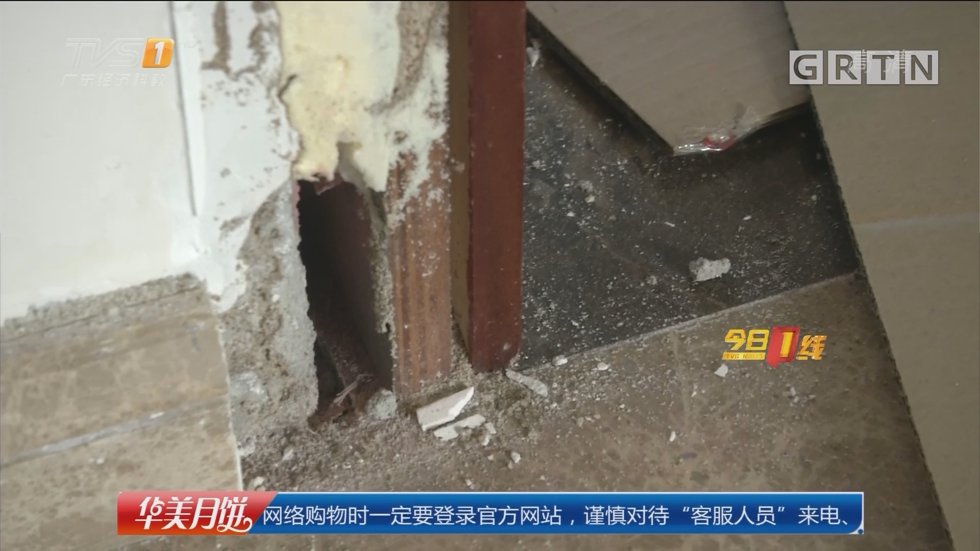 广州:业主新居遭白蚁入侵 渗水惹祸?