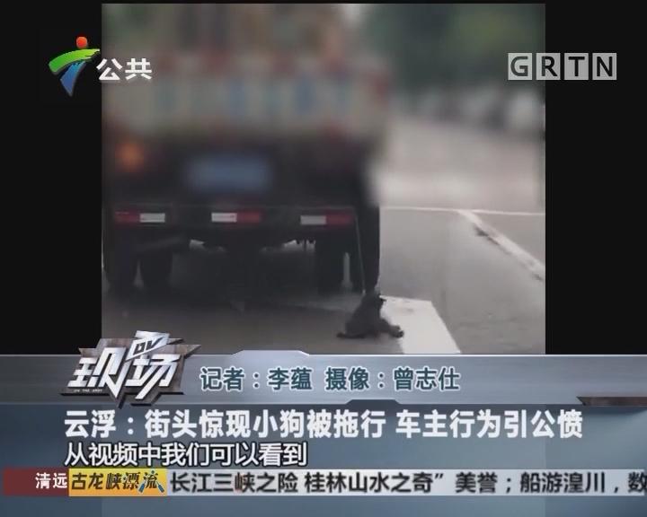 云浮:街头惊现小狗被拖行 车主行为引公愤