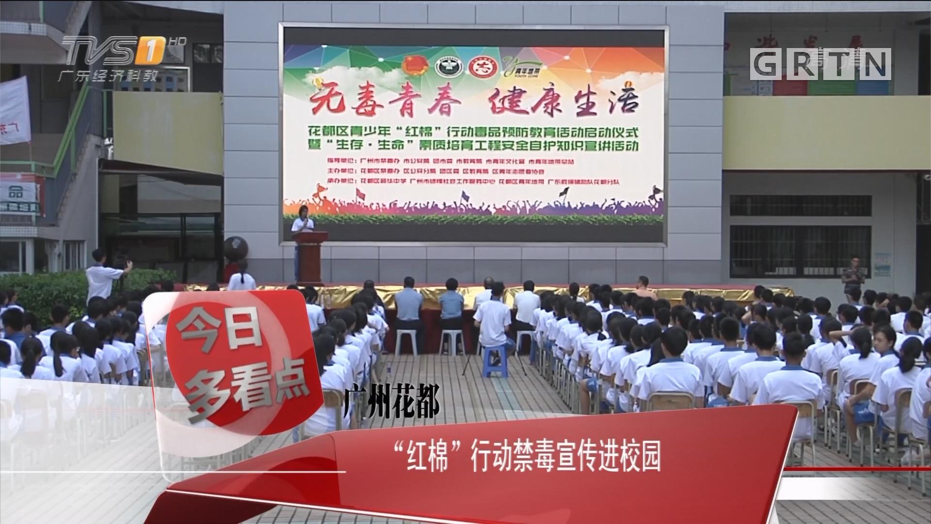 """广州花都:""""红棉""""行动禁毒宣传进校园"""