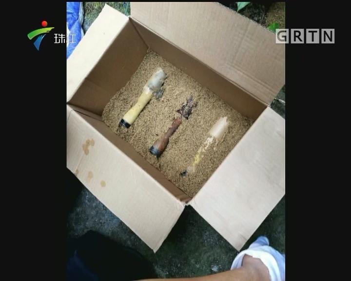 广州:租屋惊现手榴弹 消防及时清理
