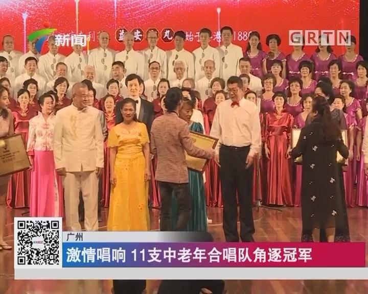 广州:激情唱响 11支中老年合唱队角逐冠军