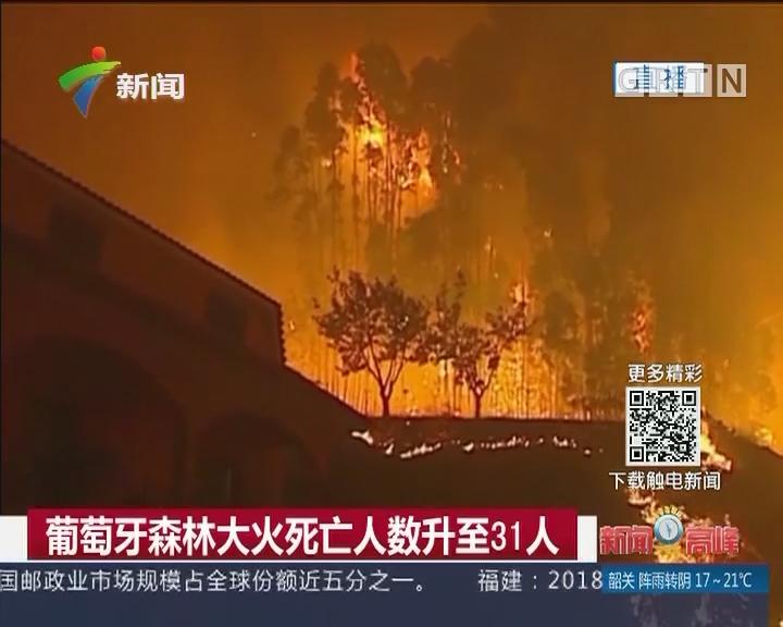 葡萄牙森林大火死亡人数升至31人