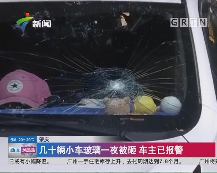 肇庆:几十辆小车玻璃一夜被砸 车主已报警