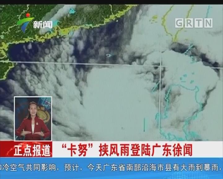 """""""卡努""""挟风雨登陆广东徐闻"""