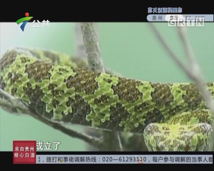 """[2017-10-28]天眼追击:揭秘""""小青龙"""""""