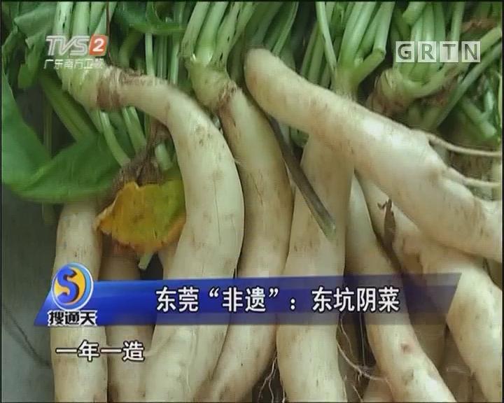 """东莞""""非遗"""":东坑阴菜"""