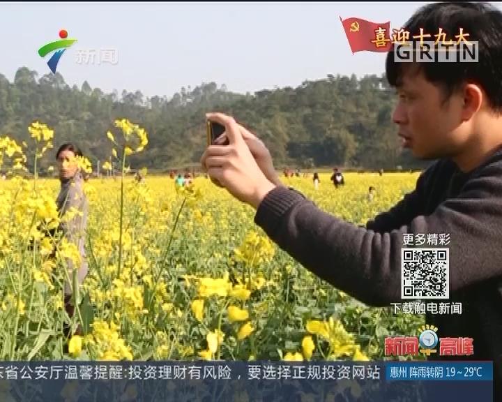 广东:不断改善人居环境 提升群众满意度