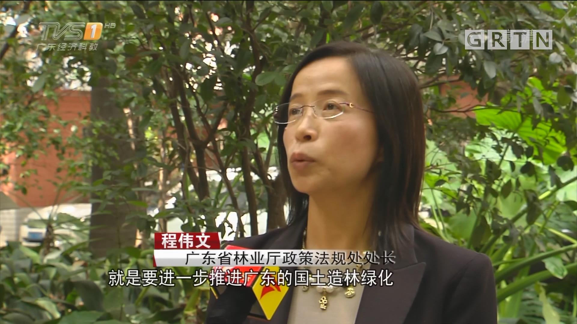 聚焦十九大:南粤各界群众喜迎盛会热议报告