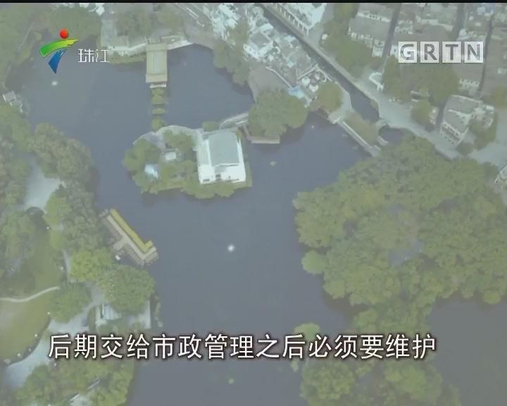 广州:荔湾湖水变清澈 缘是食藻虫来修复